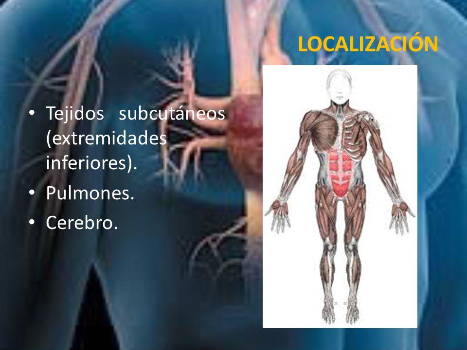 PATOGENIA Los predisponentes de la formación de trombos es (triada de Virchow): 1.Lesión endotelial: Cuando se produce una lesión del endotelio se inicia la agregación plaquetaria facilitando la formación del trombo.