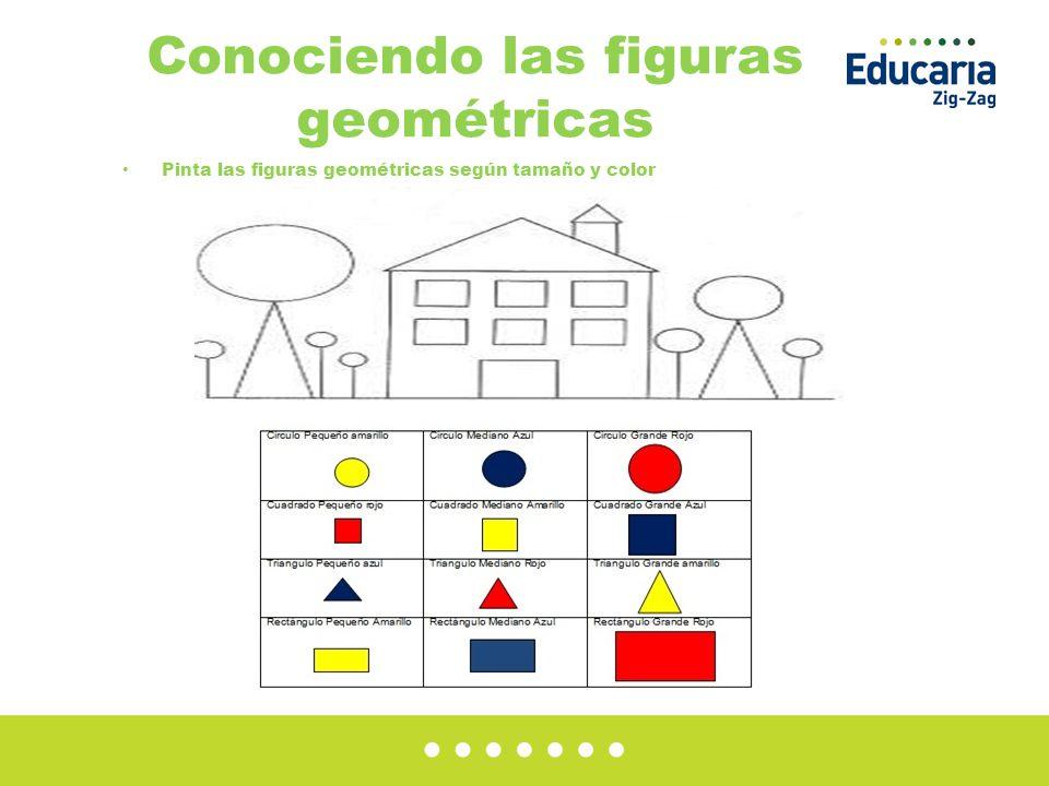Conociendo las figuras geométricas Pinta las figuras geométricas según tamaño y color