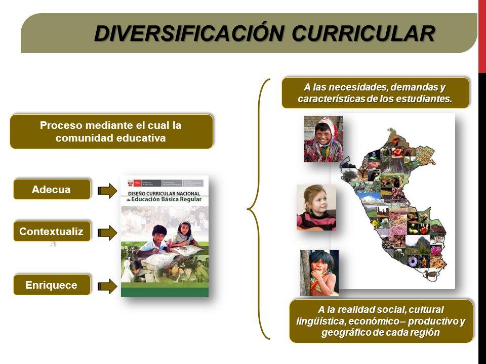 DIVERSIFICACIÓN CURRICULAR Proceso mediante el cual la comunidad educativa Adecua Contextualiz a A las necesidades, demandas y características de los estudiantes.