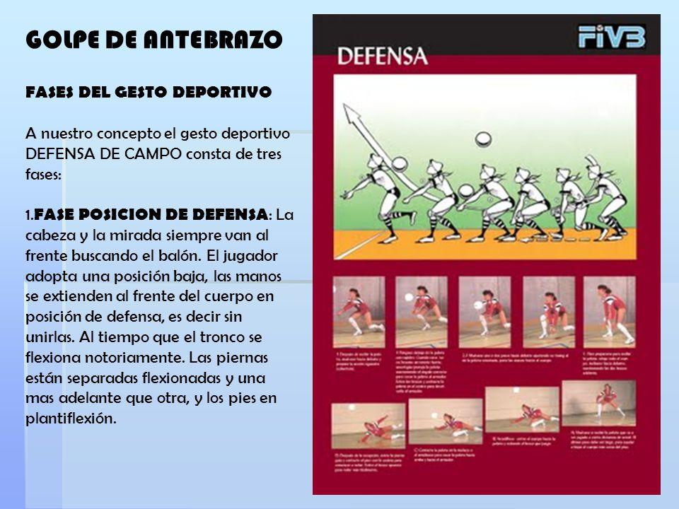 GOLPE DE ANTEBRAZO FASES DEL GESTO DEPORTIVO A nuestro concepto el gesto deportivo DEFENSA DE CAMPO consta de tres fases: 1. FASE POSICION DE DEFENSA