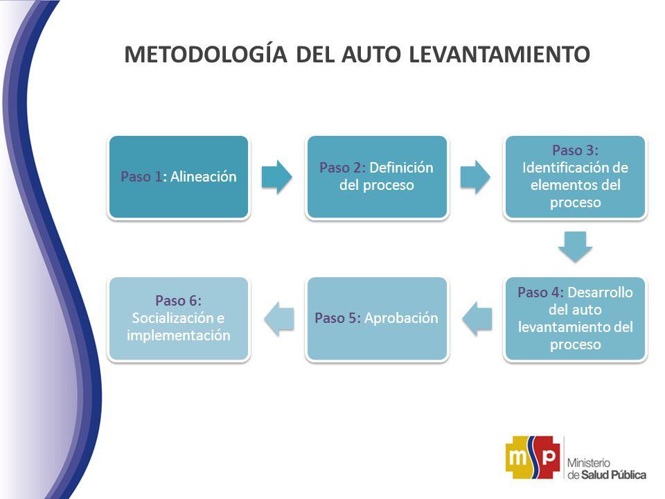METODOLOGÍA DEL AUTO LEVANTAMIENTO Paso 1: Alineación Paso 2: Definición del proceso Paso 3: Identificación de elementos del proceso Paso 4: Desarroll