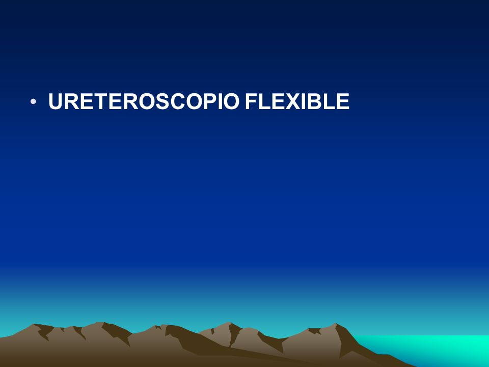 URETEROSCOPIO FLEXIBLE