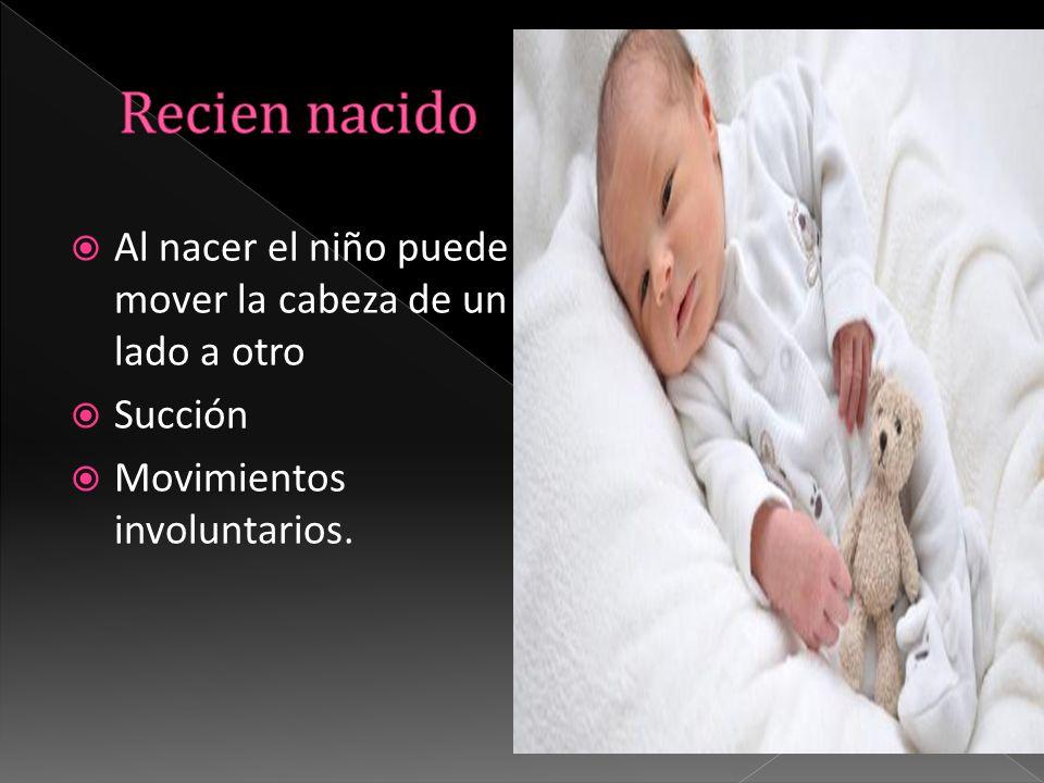  Al nacer el niño puede mover la cabeza de un lado a otro  Succión  Movimientos involuntarios.