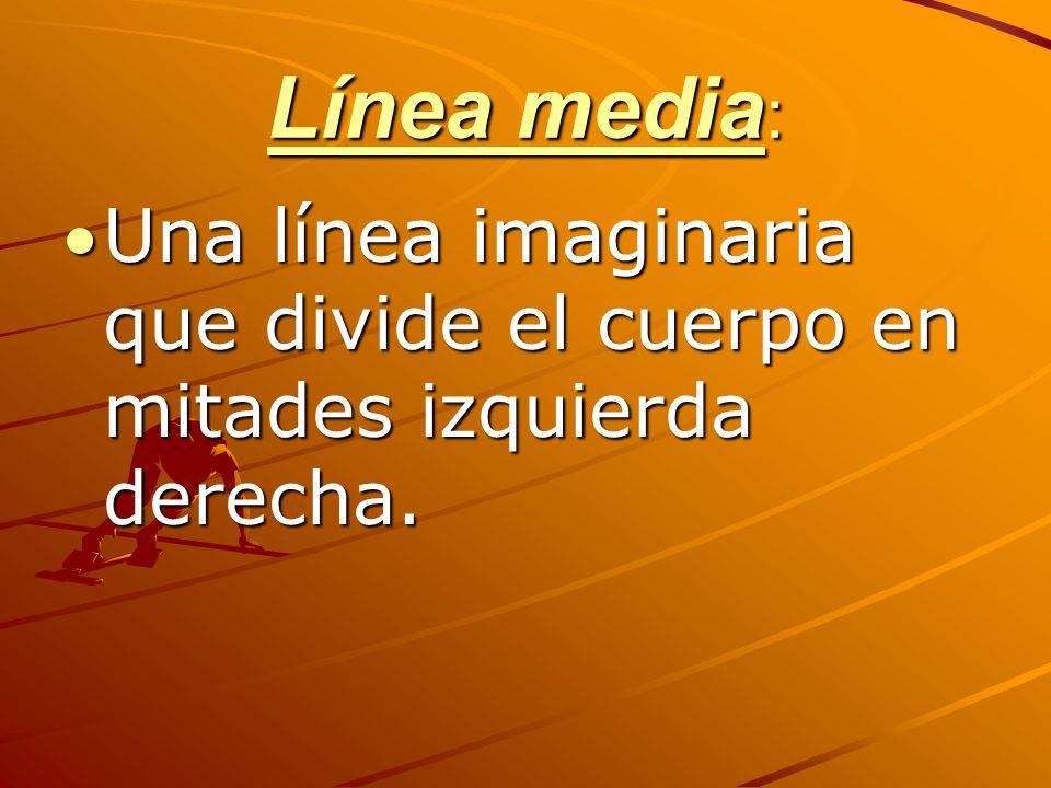 Línea media : Una línea imaginaria que divide el cuerpo en mitades izquierda derecha.