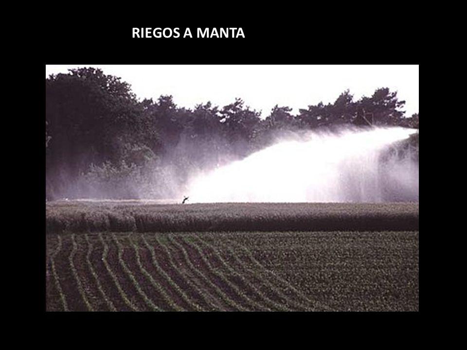 RIEGOS A MANTA