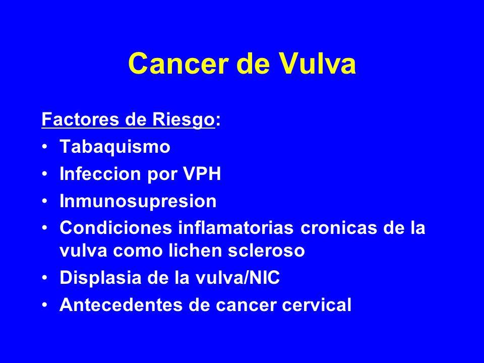 Cancer de Vulva Factores de Riesgo: Tabaquismo Infeccion por VPH Inmunosupresion Condiciones inflamatorias cronicas de la vulva como lichen scleroso Displasia de la vulva/NIC Antecedentes de cancer cervical
