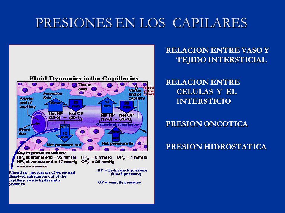 PRESIONES EN LOS CAPILARES RELACION ENTRE VASO Y TEJIDO INTERSTICIAL RELACION ENTRE CELULAS Y EL INTERSTICIO PRESION ONCOTICA PRESION HIDROSTATICA