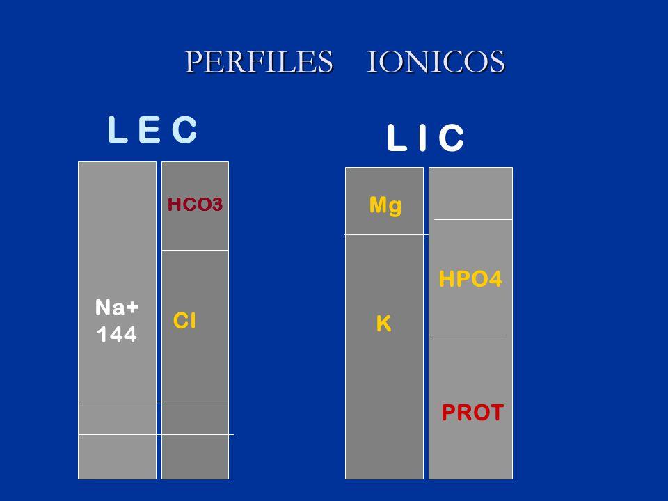 HIDRATACIÓN PARENTERAL HIDRATACIÓN PARENTERAL DESHIDRATACION SEVERA HIDRATACION PARENTERAL SE PUEDE AGREGAR HIDRATACIÓN ORAL AL ESTABILIZAR OBJETIVOS RAPIDA RESTAURACIÓN DEL VOLUMEN VASCULAR CORRECCIÓN ELECTROLITICA