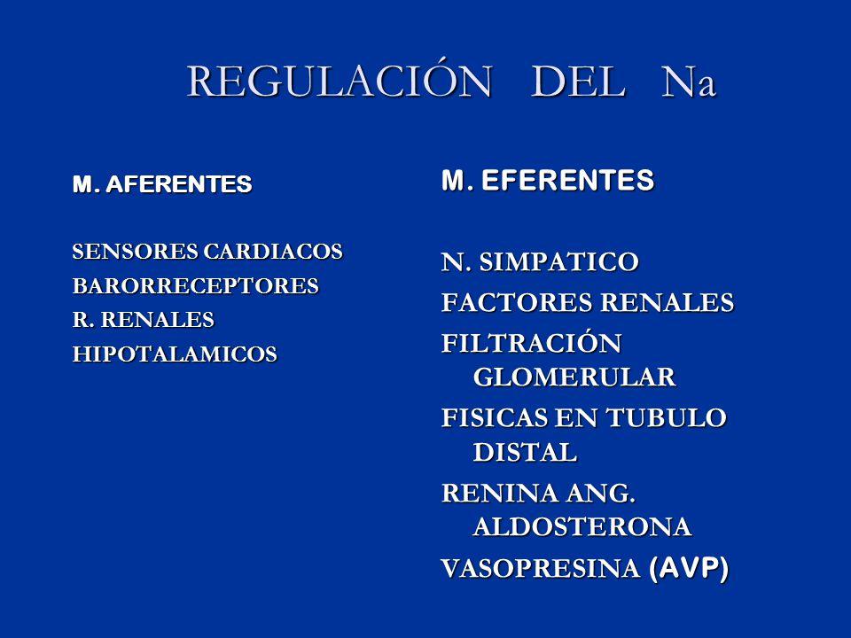 DESHIDRATACIÓN HIPOTONICA LA DISMINUCIÓN EN EL LIQUIDO EXTRACELULAR ES LA MAS IMPORTANTE SIGNOS DE SHOCK COMPLICACIONES NEUROLOGICAS (EDEMA) Si se corrigen rápidamente una hiponatremia crónica (mas de 2 mEq/L/día se produce (mielinolisis pontica)