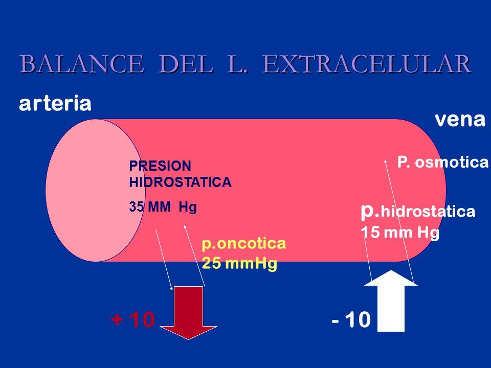 Administración de líquidos parenterales FASE ISO ISOHIPERHIPO I10-20% DEL TOTAL EN 1-2 H.
