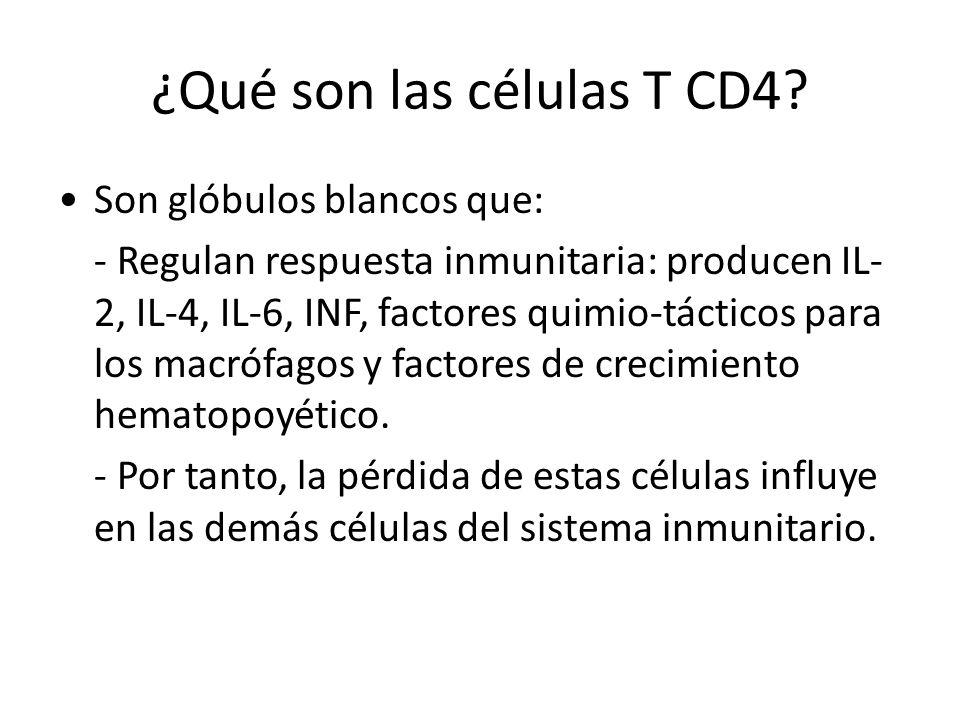 ¿Qué son las células T CD4.