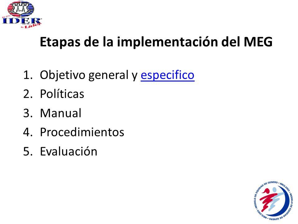 Implementación del MEG 1.Pre-Diagnóstico y asesoría INMUJERES.