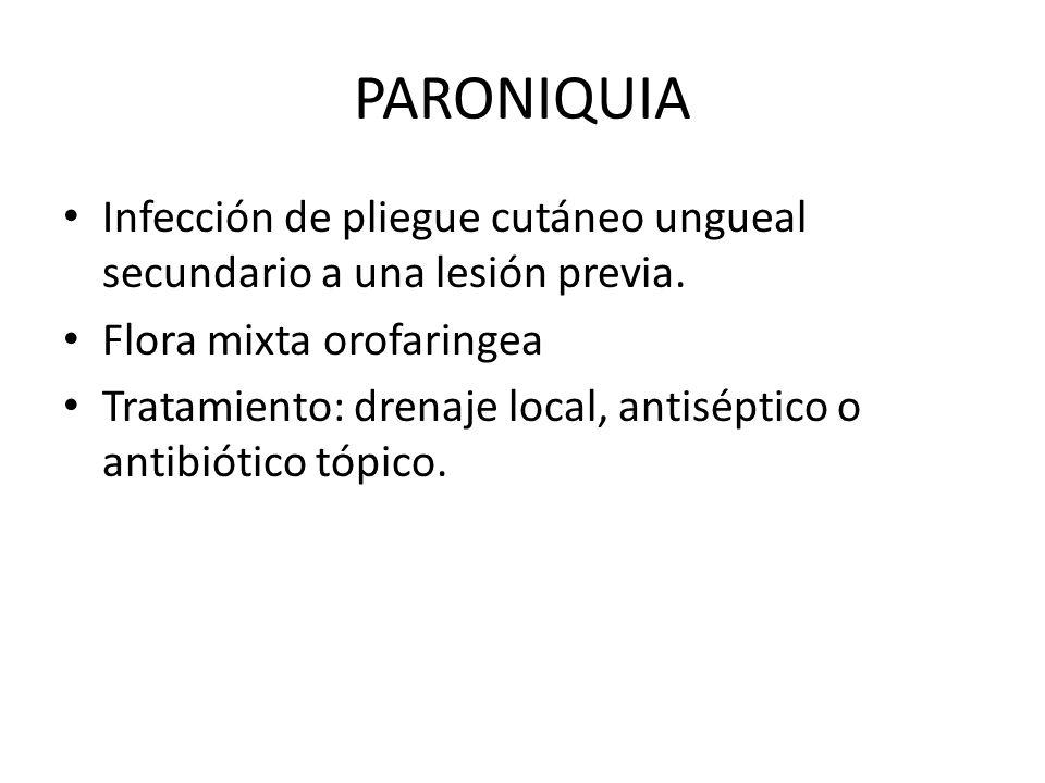 PARONIQUIA Infección de pliegue cutáneo ungueal secundario a una lesión previa. Flora mixta orofaringea Tratamiento: drenaje local, antiséptico o anti