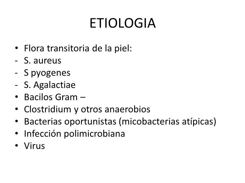 ETIOLOGIA Flora transitoria de la piel: -S. aureus -S pyogenes -S. Agalactiae Bacilos Gram – Clostridium y otros anaerobios Bacterias oportunistas (mi