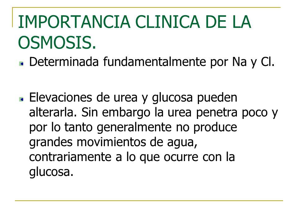 IMPORTANCIA CLINICA DE LA OSMOSIS. Determinada fundamentalmente por Na y Cl. Elevaciones de urea y glucosa pueden alterarla. Sin embargo la urea penet