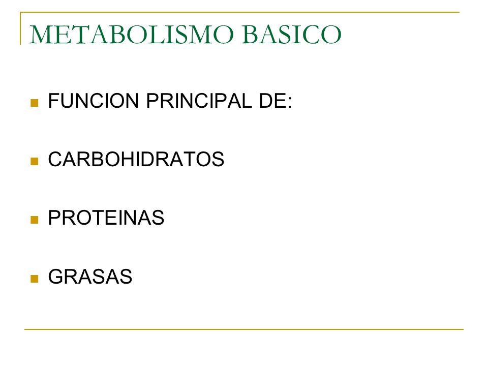 METABOLISMO BASICO CALORIAS POR GRAMO CARBOHIDRATOS = 4 PROTEINAS = 4 GRASAS= 9 ALCOHOL= 7