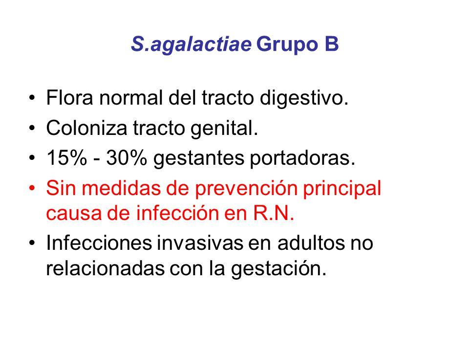 S.agalactiae Grupo B Flora normal del tracto digestivo. Coloniza tracto genital. 15% - 30% gestantes portadoras. Sin medidas de prevención principal c