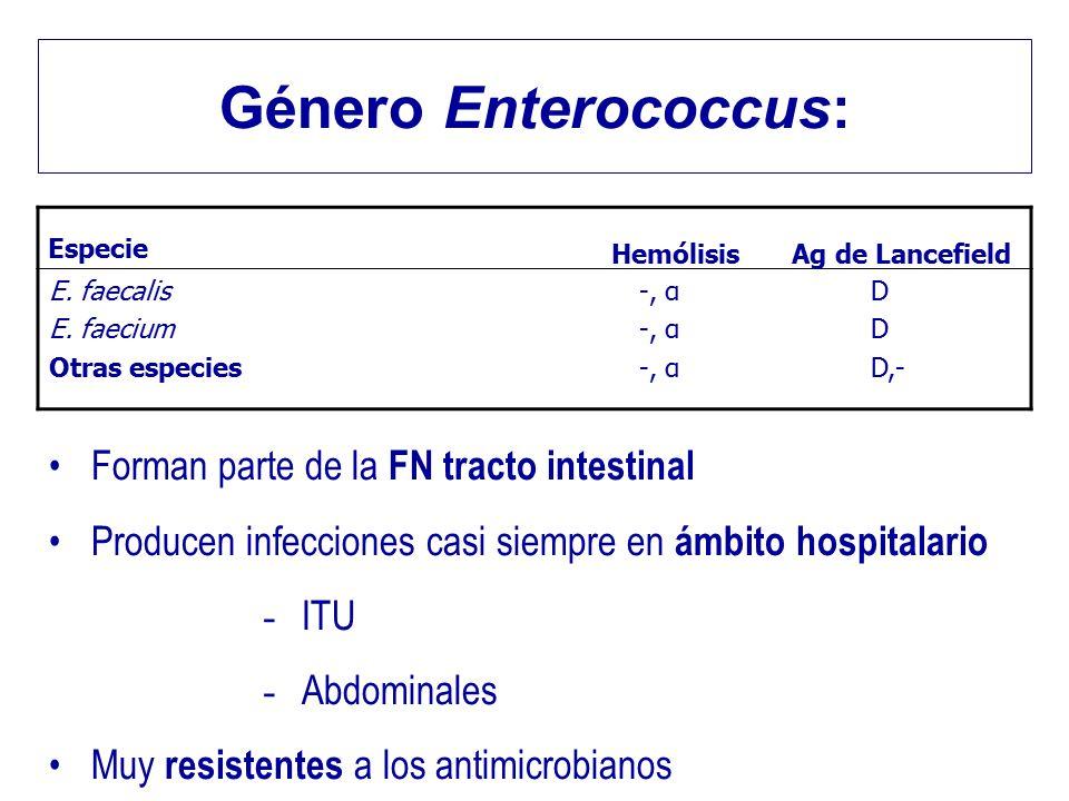 Género Enterococcus: Especie HemólisisAg de Lancefield E. faecalis E. faecium Otras especies -, α D D,- Forman parte de la FN tracto intestinal Produc