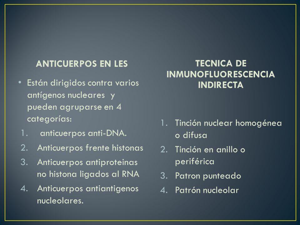 ANTICUERPOS EN LES Están dirigidos contra varios antígenos nucleares y pueden agruparse en 4 categorías: 1.