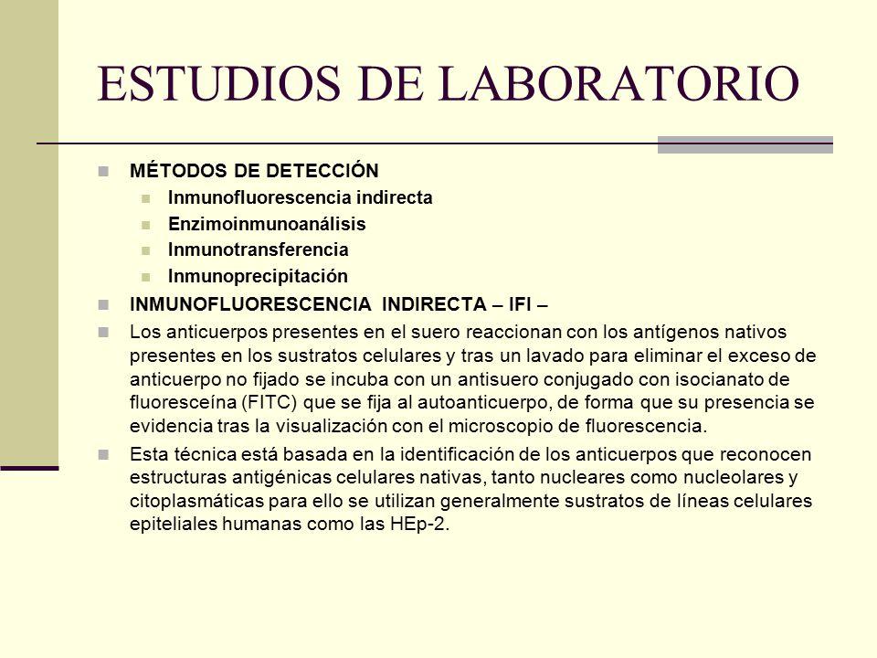 ESTUDIOS DE LABORATORIO MÉTODOS DE DETECCIÓN Inmunofluorescencia indirecta Enzimoinmunoanálisis Inmunotransferencia Inmunoprecipitación INMUNOFLUORESC