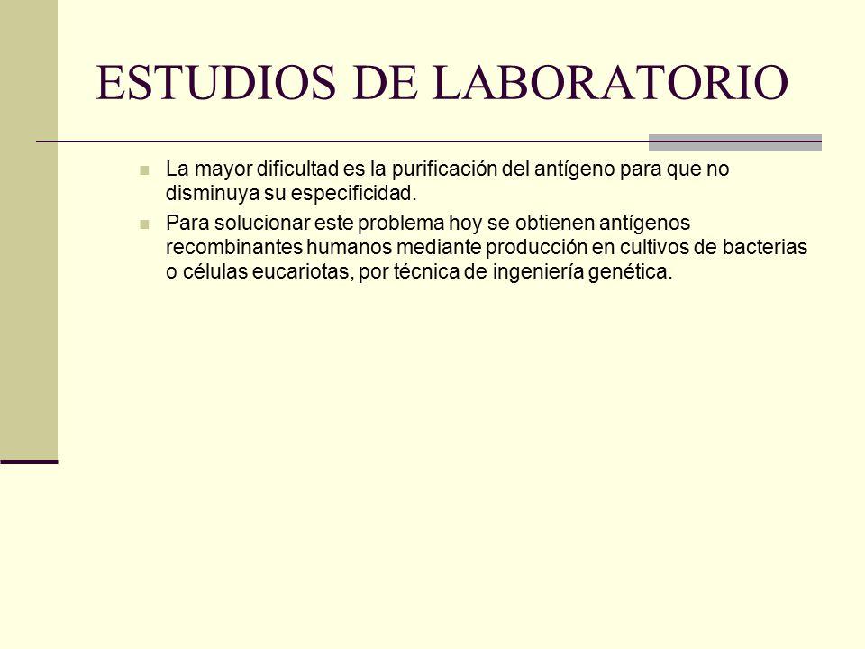 ESTUDIOS DE LABORATORIO La mayor dificultad es la purificación del antígeno para que no disminuya su especificidad.