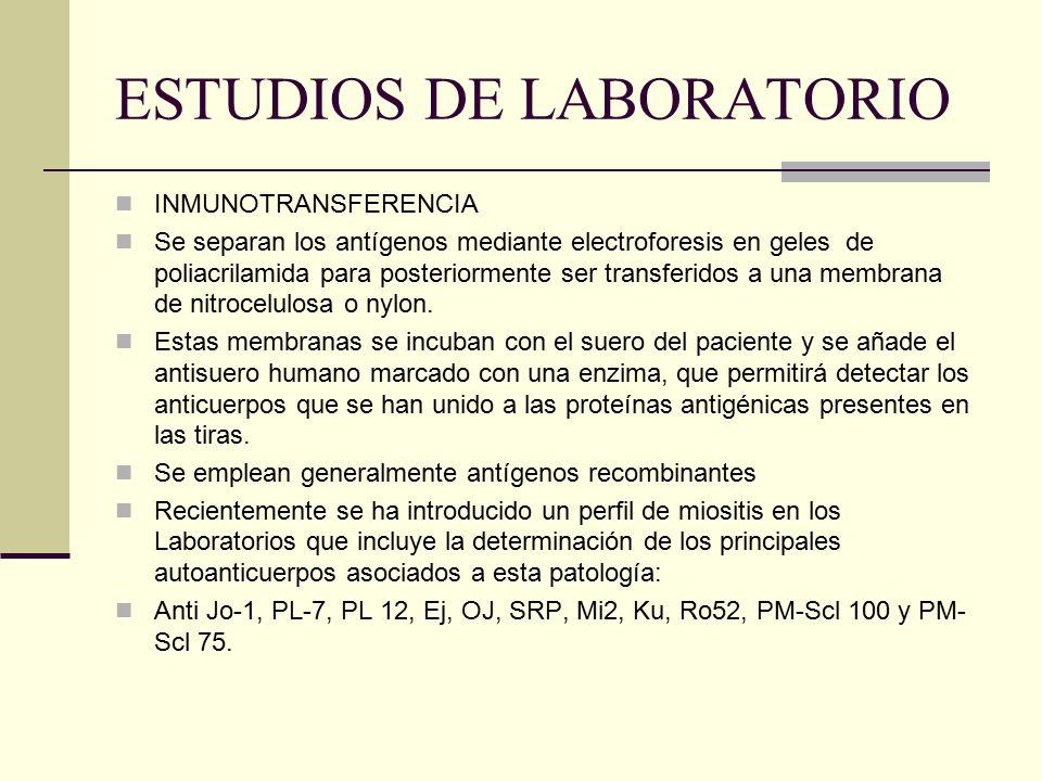 ESTUDIOS DE LABORATORIO INMUNOTRANSFERENCIA Se separan los antígenos mediante electroforesis en geles de poliacrilamida para posteriormente ser transf