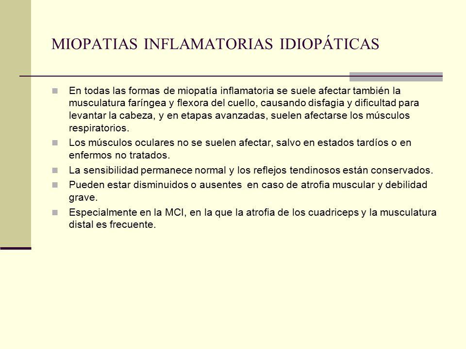 MIOPATIAS INFLAMATORIAS IDIOPÁTICAS En todas las formas de miopatía inflamatoria se suele afectar también la musculatura faríngea y flexora del cuello, causando disfagia y dificultad para levantar la cabeza, y en etapas avanzadas, suelen afectarse los músculos respiratorios.
