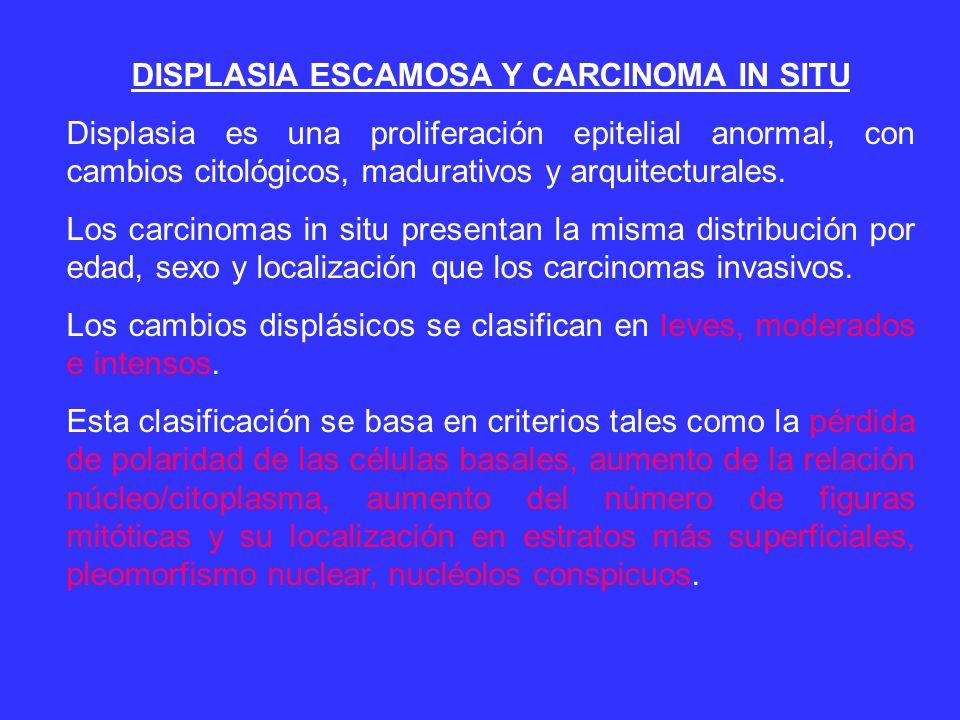 DISPLASIA ESCAMOSA Y CARCINOMA IN SITU Displasia es una proliferación epitelial anormal, con cambios citológicos, madurativos y arquitecturales.