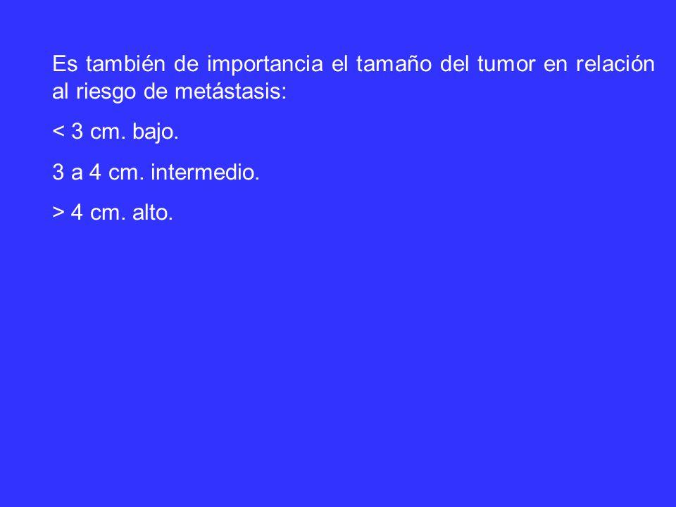 Es también de importancia el tamaño del tumor en relación al riesgo de metástasis: < 3 cm.