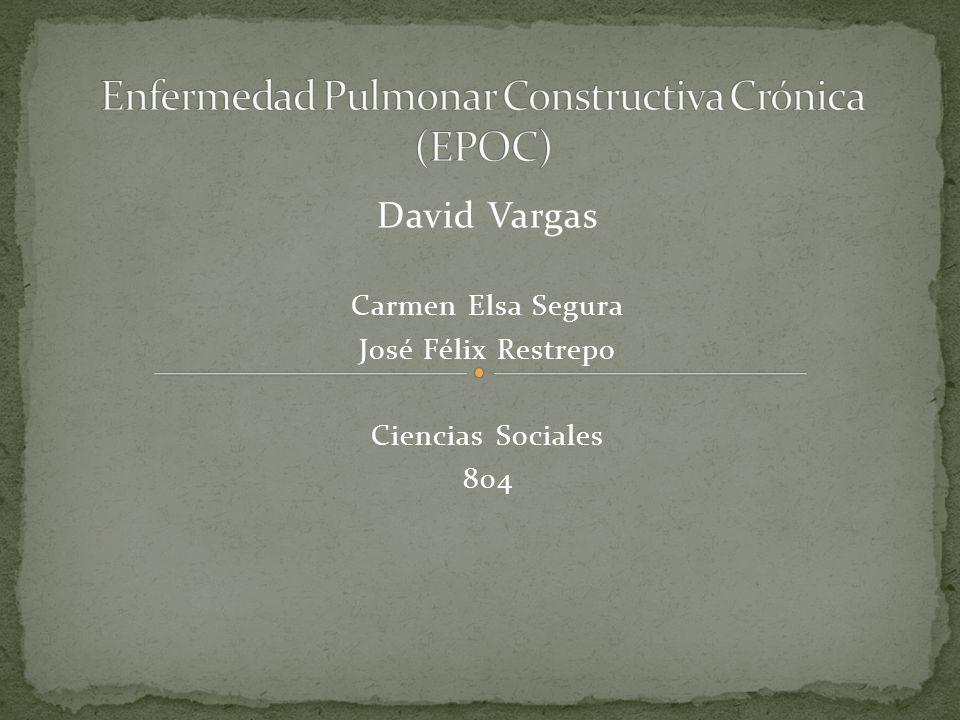 David Vargas Carmen Elsa Segura José Félix Restrepo Ciencias Sociales 804