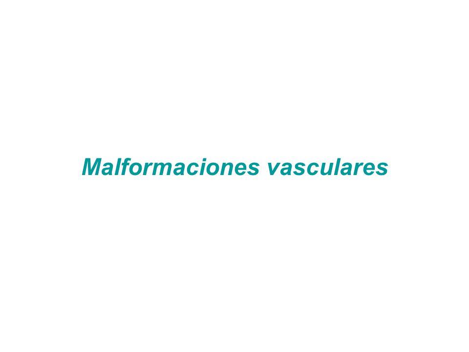 Malformaciones vasculares/Hemangiomas capilares infantiles Grupo de lesiones Consideras por algunas clasificaciones como tumorales benignas Aparición en varios órganos Asociados a enfermedades Algunas de mal pronóstico y comportamiento agresivo De aparición más frecuentemente pediátrica –RN y lactantes Asociadas a factores genéticos, ambientales