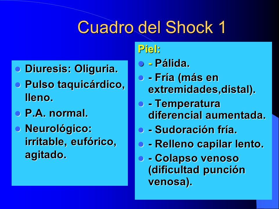 Cuadro del Shock 1 Diuresis: Oliguria. Diuresis: Oliguria. Pulso taquicárdico, lleno. Pulso taquicárdico, lleno. P.A. normal. P.A. normal. Neurológico