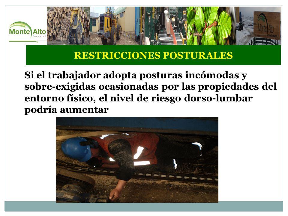 RESTRICCIONES POSTURALES Si el trabajador adopta posturas incómodas y sobre-exigidas ocasionadas por las propiedades del entorno físico, el nivel de riesgo dorso-lumbar podría aumentar