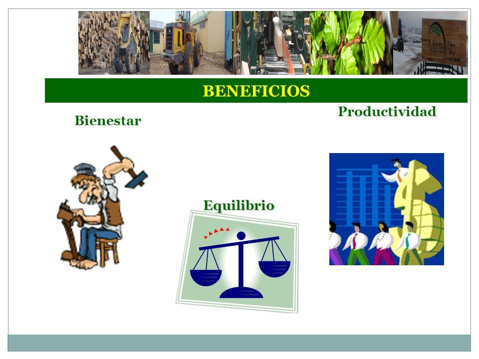 BENEFICIOS Bienestar Equilibrio Productividad