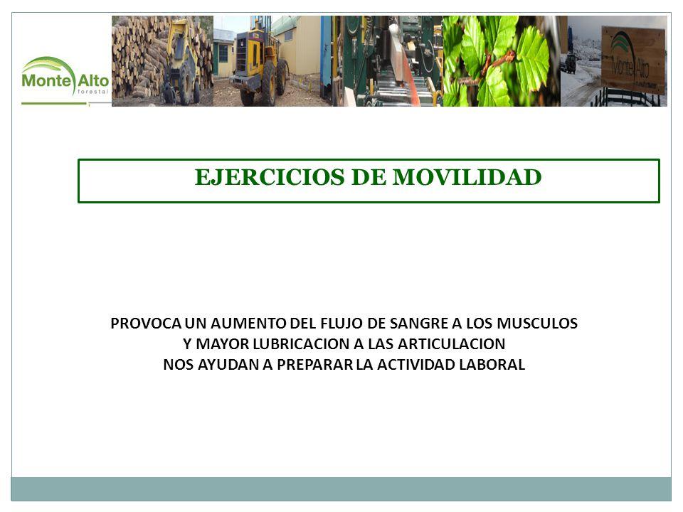 EJERCICIOS DE MOVILIDAD PROVOCA UN AUMENTO DEL FLUJO DE SANGRE A LOS MUSCULOS Y MAYOR LUBRICACION A LAS ARTICULACION NOS AYUDAN A PREPARAR LA ACTIVIDAD LABORAL