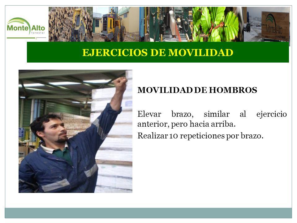 EJERCICIOS DE MOVILIDAD MOVILIDAD DE HOMBROS Elevar brazo, similar al ejercicio anterior, pero hacia arriba.