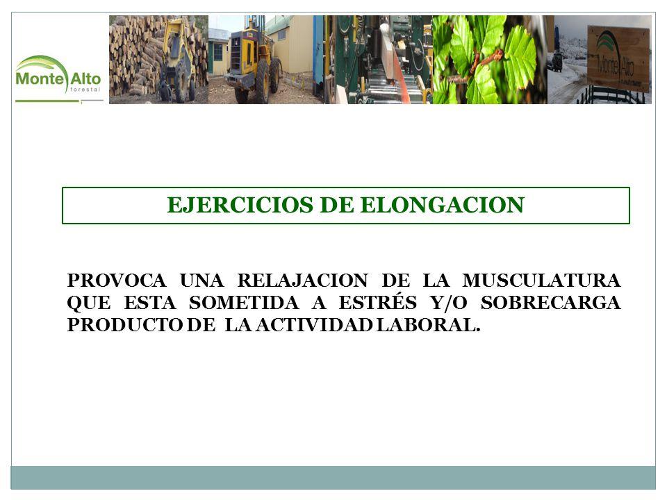 EJERCICIOS DE ELONGACION PROVOCA UNA RELAJACION DE LA MUSCULATURA QUE ESTA SOMETIDA A ESTRÉS Y/O SOBRECARGA PRODUCTO DE LA ACTIVIDAD LABORAL.