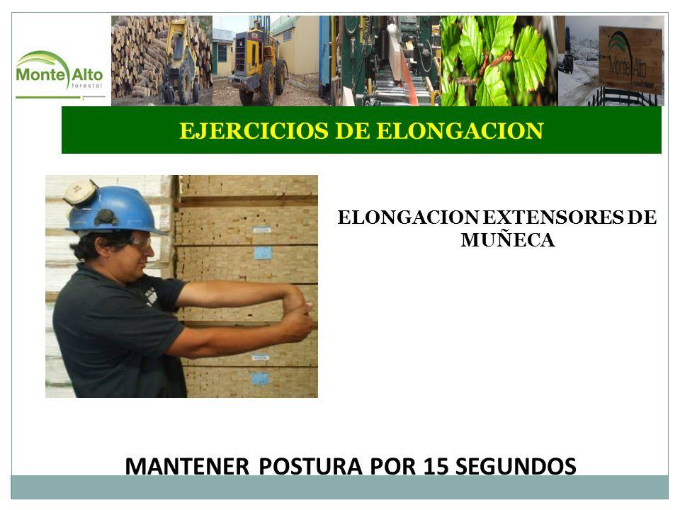 EJERCICIOS DE ELONGACION ELONGACION EXTENSORES DE MUÑECA MANTENER POSTURA POR 15 SEGUNDOS