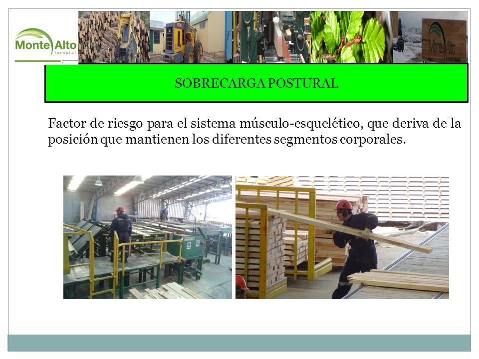 EJERCICIOS DE ELONGACION ELONGACION FLEXORES DE MUÑECA MANTENER POSTURA POR 15 SEGUNDOS