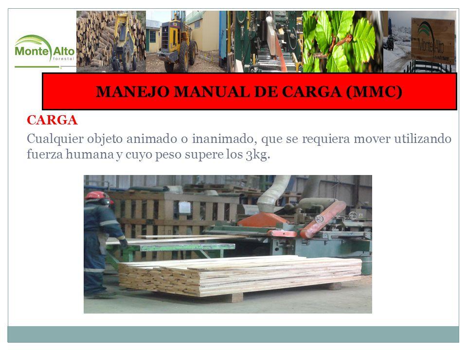 EJERCICIOS DE ELONGACION ELONGACION MUSCULATURA POSTERIOR DE LA ESPALDA MANTENER POSTURA POR 15 SEGUNDOS