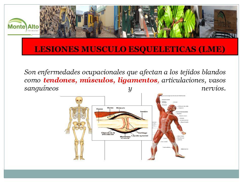 LESIONES MUSCULO ESQUELETICAS (LME) Son enfermedades ocupacionales que afectan a los tejidos blandos como tendones, músculos, ligamentos, articulaciones, vasos sanguíneos y nervios.