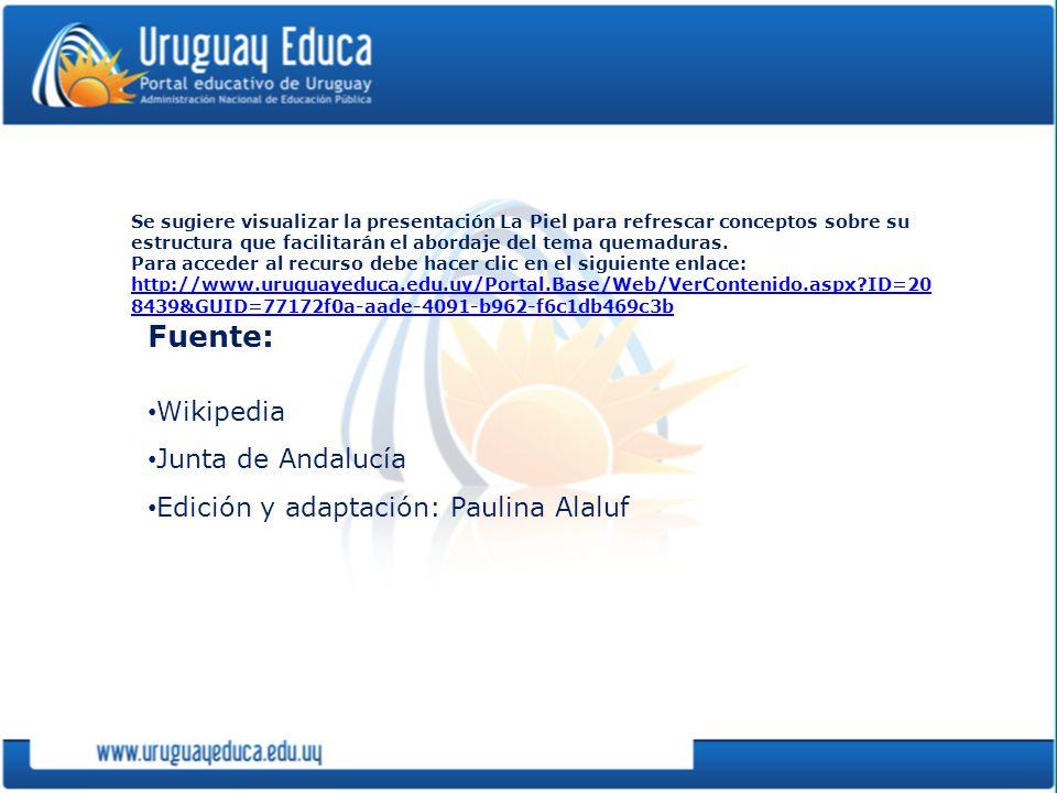 Fuente: Wikipedia Junta de Andalucía Edición y adaptación: Paulina Alaluf Se sugiere visualizar la presentación La Piel para refrescar conceptos sobre