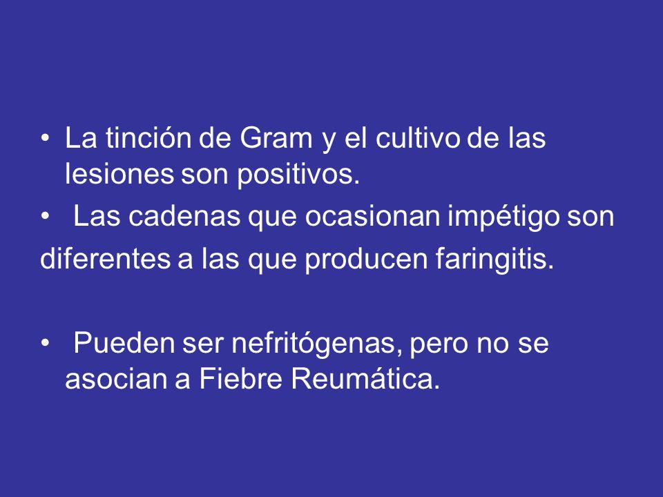 La tinción de Gram y el cultivo de las lesiones son positivos. Las cadenas que ocasionan impétigo son diferentes a las que producen faringitis. Pueden