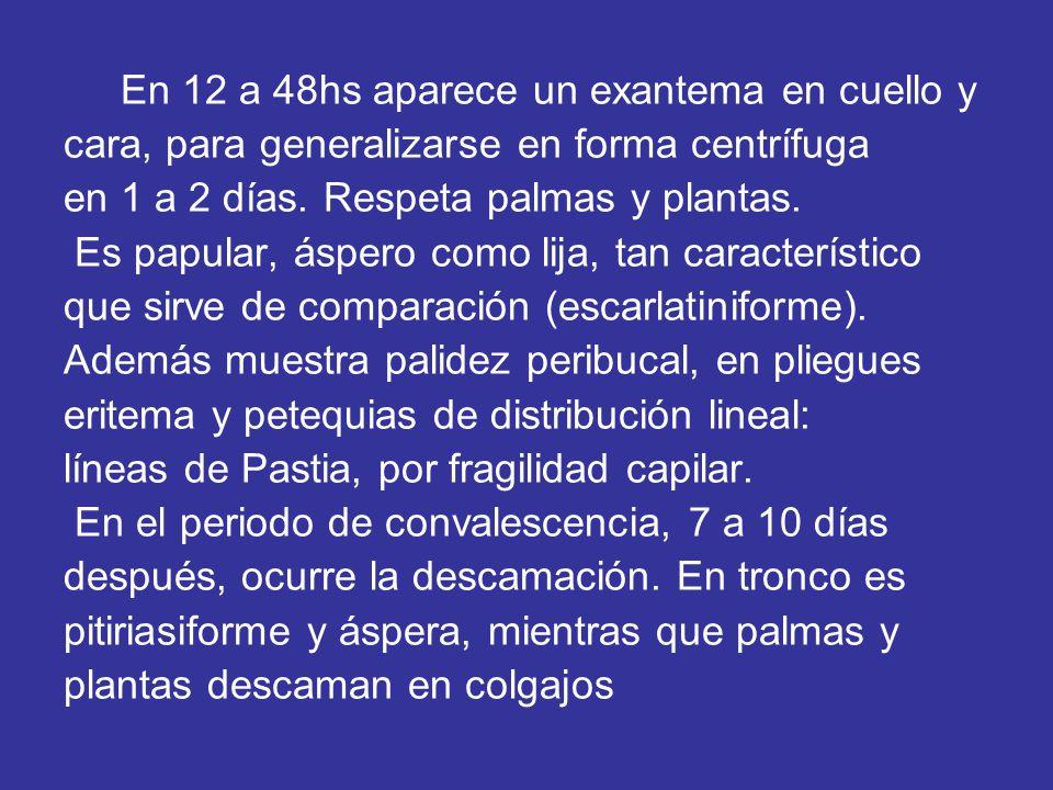 En 12 a 48hs aparece un exantema en cuello y cara, para generalizarse en forma centrífuga en 1 a 2 días.
