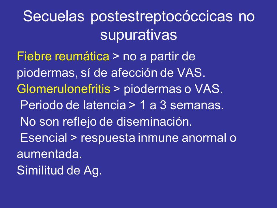 Secuelas postestreptocóccicas no supurativas Fiebre reumática > no a partir de piodermas, sí de afección de VAS. Glomerulonefritis > piodermas o VAS.