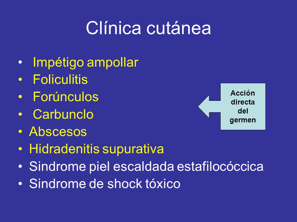 Clínica cutánea Impétigo ampollar Foliculitis Forúnculos Carbunclo Abscesos Hidradenitis supurativa Sindrome piel escaldada estafilocóccica Sindrome de shock tóxico Acción directa del germen