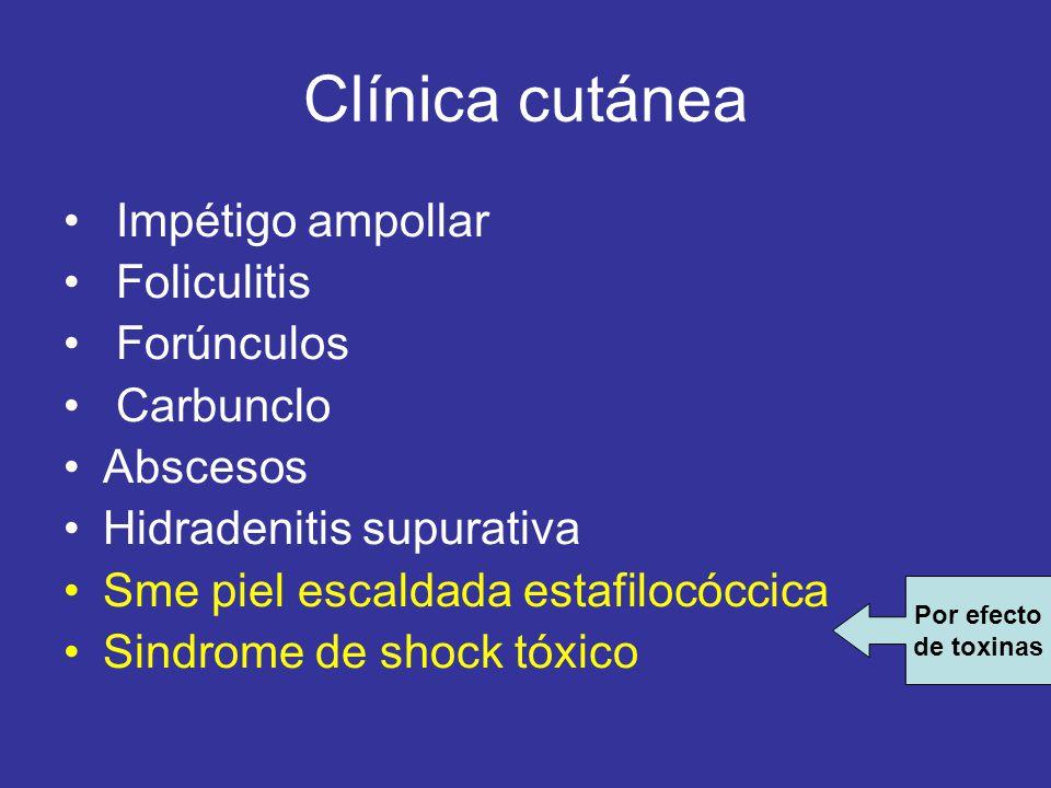 Clínica cutánea Impétigo ampollar Foliculitis Forúnculos Carbunclo Abscesos Hidradenitis supurativa Sme piel escaldada estafilocóccica Sindrome de sho