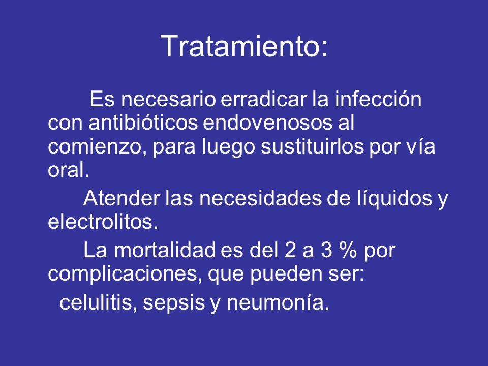 Tratamiento: Es necesario erradicar la infección con antibióticos endovenosos al comienzo, para luego sustituirlos por vía oral. Atender las necesidad