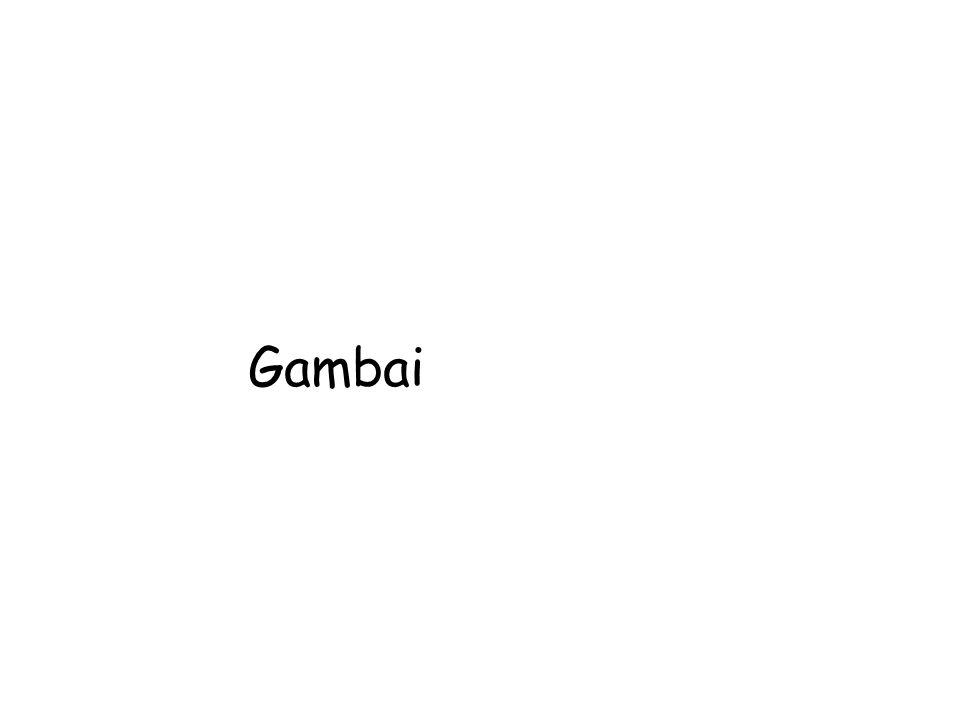 Gambai