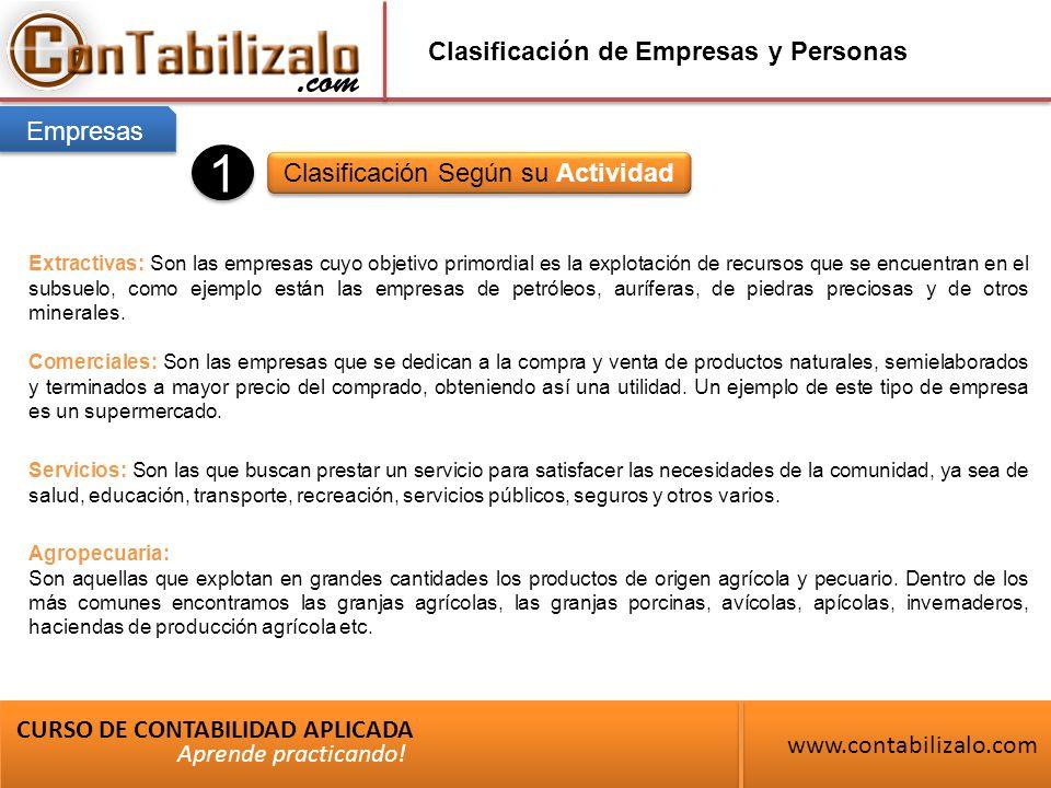 Clasificación de Empresas y Personas Clasificación Según su Actividad CURSO DE CONTABILIDAD APLICADA www.contabilizalo.com Aprende practicando.